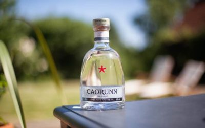SCOTTISH GIN OF THE YEAR TOP 5